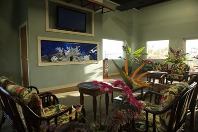Hawaii Custom Aquariums Installation